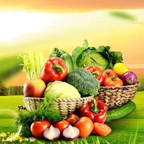 安徽绿安生态农业科技有限公