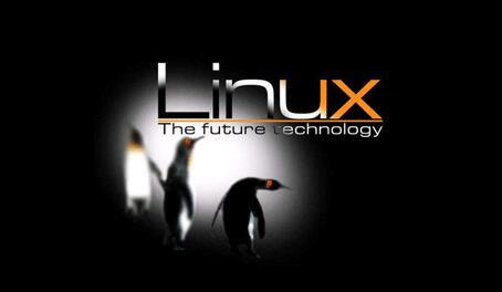 什么是linux虚拟主机系统以及服务器租用如何选择带宽大小